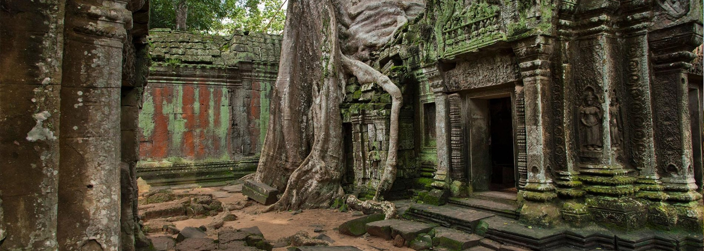 Discover Best Local Cambodia Tours