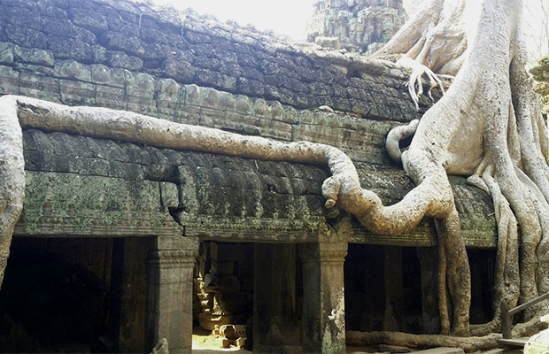 Highlight Angkor Tour & Sunset: Full day